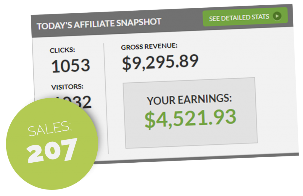 1 Page Profits Review and Proof