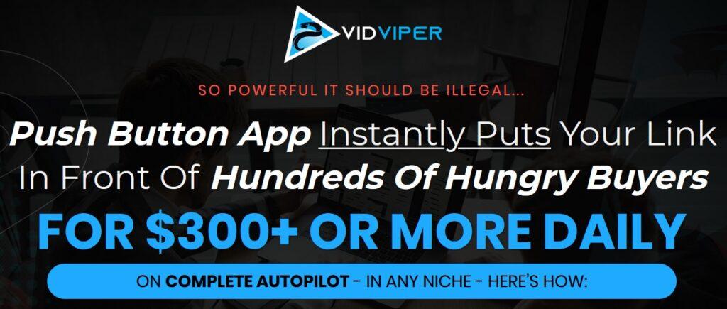 VidViper Review